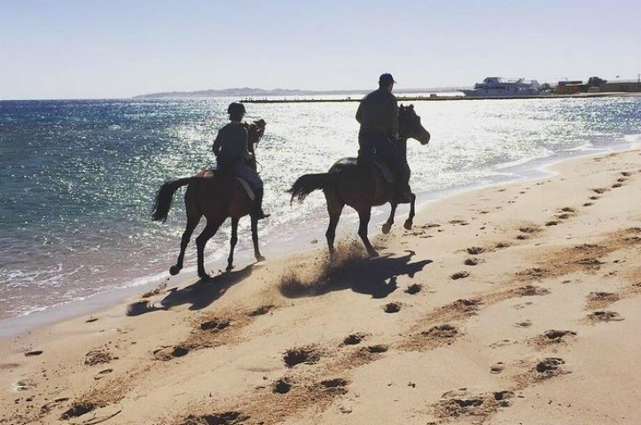 Horse Riding in Hurghada | Hurghada Horseback Ride