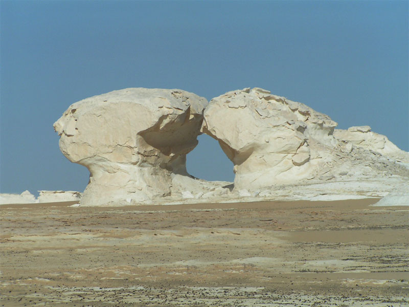 Bahariya Oasis and White Desert Tour From Cairo | Cairo day tours