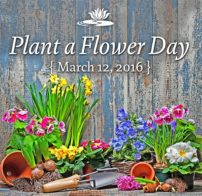 National plant a Flower Day   National Flower Day