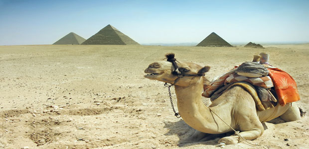 Pyramids and Sakkara Trip from Sokhna Port   Cairo day tours from sokhna