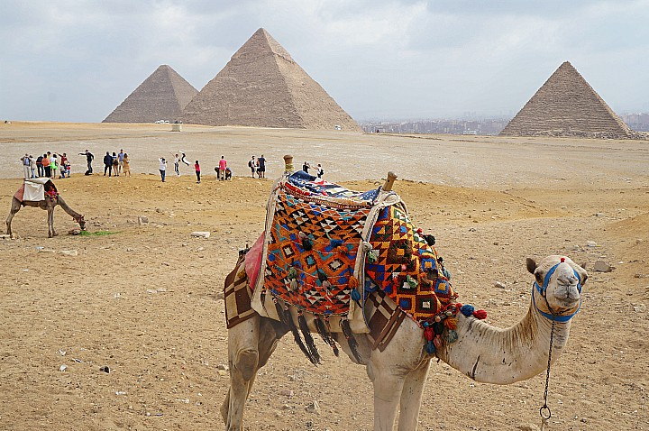 Tour to Giza Pyramids and Meidum from Cairo