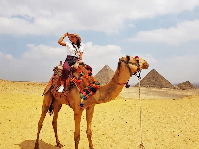 Half Day Tour to Giza Pyramids and Sphinx   Cairo Day Tours and Excursions